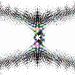 Empreintes du cosmos 0003